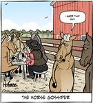 Horse Gossiper