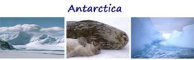3 Antarctic Pictures  - Set 2