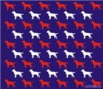 red white on blue labs