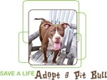 Save a Life - Adopt