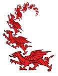 Spiralling dragons
