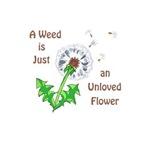 AN UNLOVED FLOWER