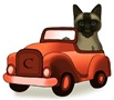 Siamese cat Car t-shirts and gifts