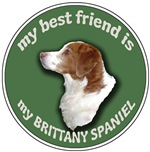 BEST FRIEND BRITTANY SPANIEL
