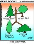 #10 Tree's family man
