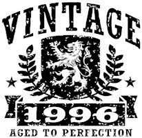 Vintage 1996 t-shirt