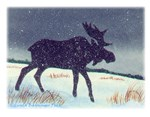 Snowdusted Moose