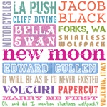 New Moon Stuff [multicolor]