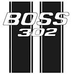 Boss 302 racing StripesNew Section