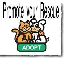 Promote Your Rescue