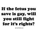 If the fetus you save is gay ...
