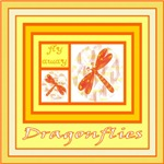 Dragonfly Drawings