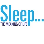Sleep...the meaning of life