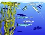 Kelp Edge Fish drawing