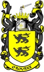 O'ROURKE Coat of Arms