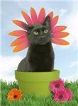 Flowerchild Cards