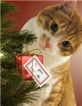 Cute Cat Christmas Cards
