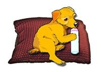 <B>PUPPY LOVE: PUPPY DOG BREED T-SHIRTS & GIFTS</B