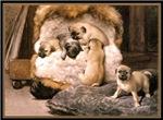 VINTAGE DOG ART: PUG PUPPIES