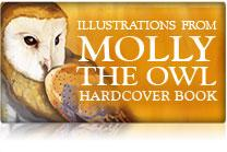 Illustrations From Molly The Owl Hardcover Book