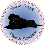 Draft Team - Dixie & Sampson