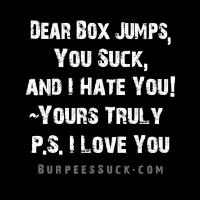 DEAR BOX JUMPS