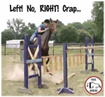 Horse & Rider Confliction Fail