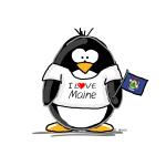 Maine Penguin