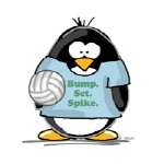 volleyball bump set spike Penguin
