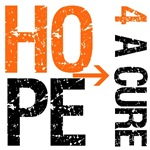 Hope 4 a Cure Kidney Cancer T-Shirts & Gifts