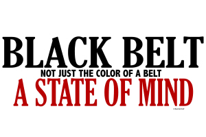 Not Just The Color Of A Belt  Karate Shirts Gifts