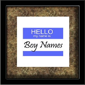 Hello My Name Is: Boy Names