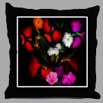 Throw Pillow 24.99