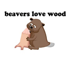 Beavers Love Wood