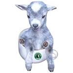 TeaCup Goat