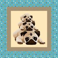 Sweet Pugs on Aqua Background