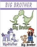 BIG BROTHER DESIGNS