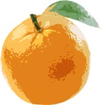 Orange Fruit Navel Valencia Naranja