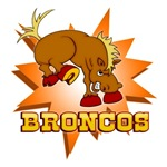 BRONCOS TEAM T-SHIRTS AND GIFTS