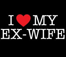 I Love My Ex-Wife