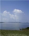 Gulf Memories