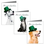 Funny St. Patrick's Day Cards