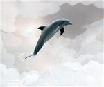 Celestial Dolphin