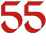 Hippie 55