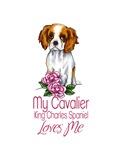 Cavalier Love