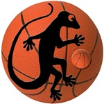 Gecko Basketball