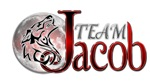 Twilight Team Jacob