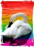 Rainbow Swan T-shirts & Gifts