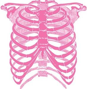 Pink Ribcage