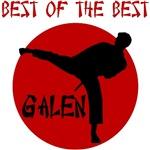 Galen Karate